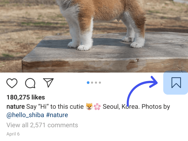 Save and Create a Collection of Your Favorite Instagram Posts